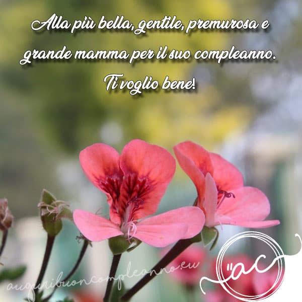 Frasi Di Auguri Per La Mamma Compleanno.Buon Compleanno Mamma Le Dediche Piu Speciali Del 2020
